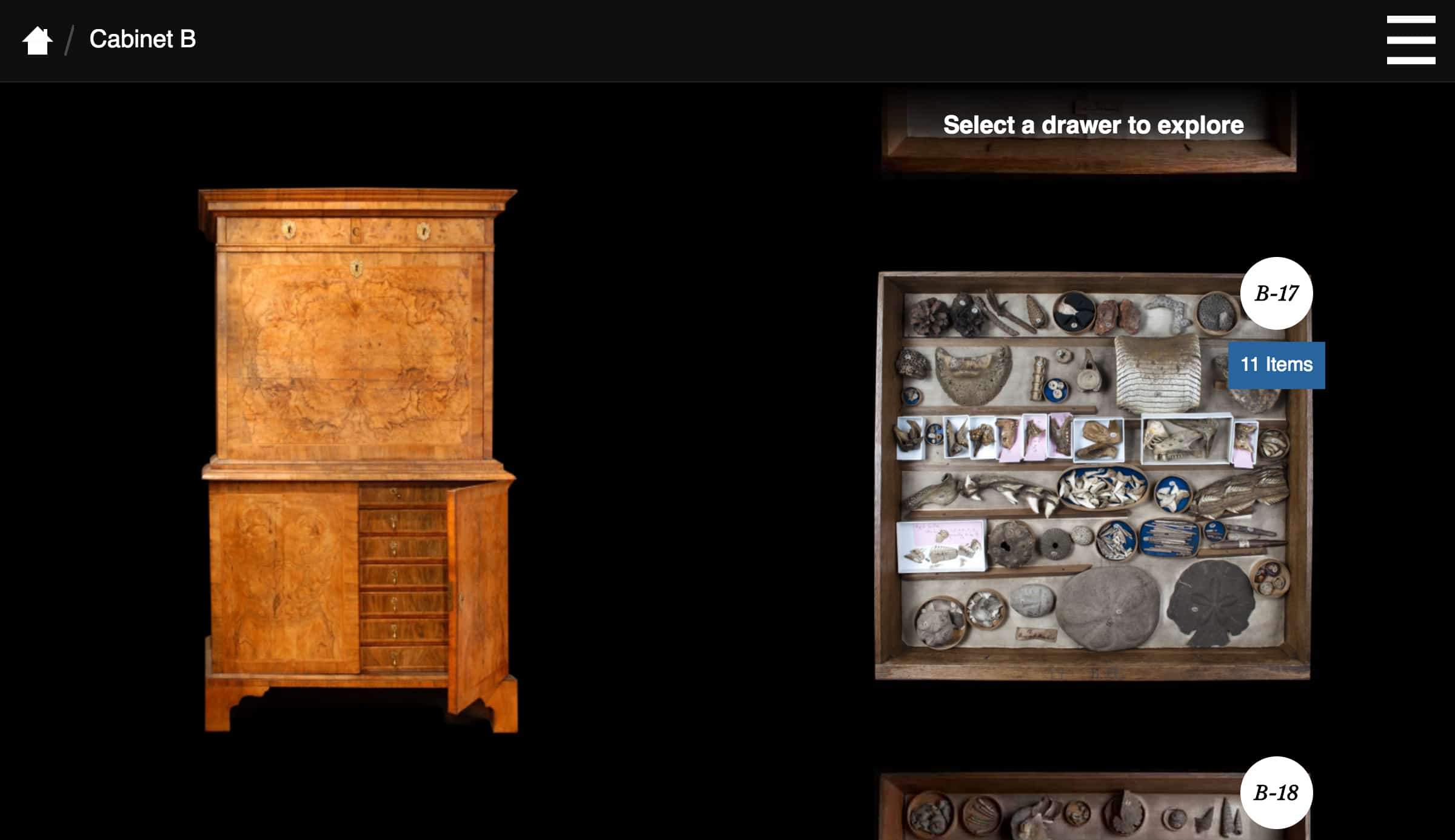 Cabinet and drawer from the Woodwardian Collection