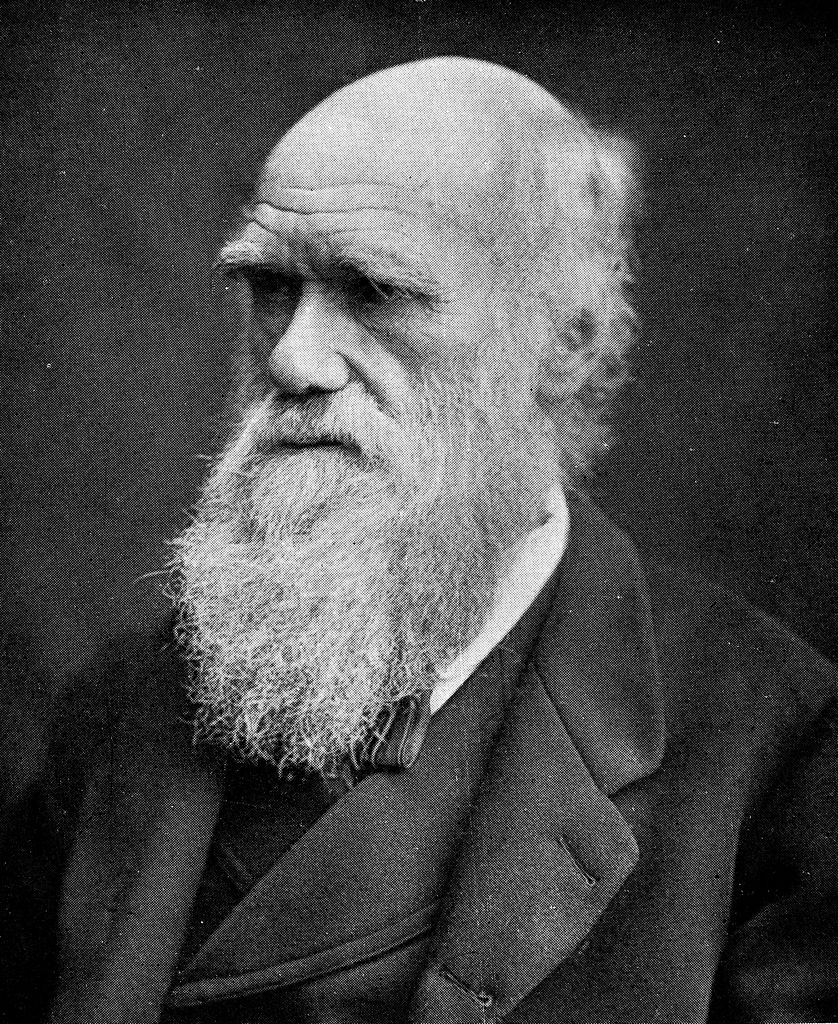 Black and white image of Charles Darwin