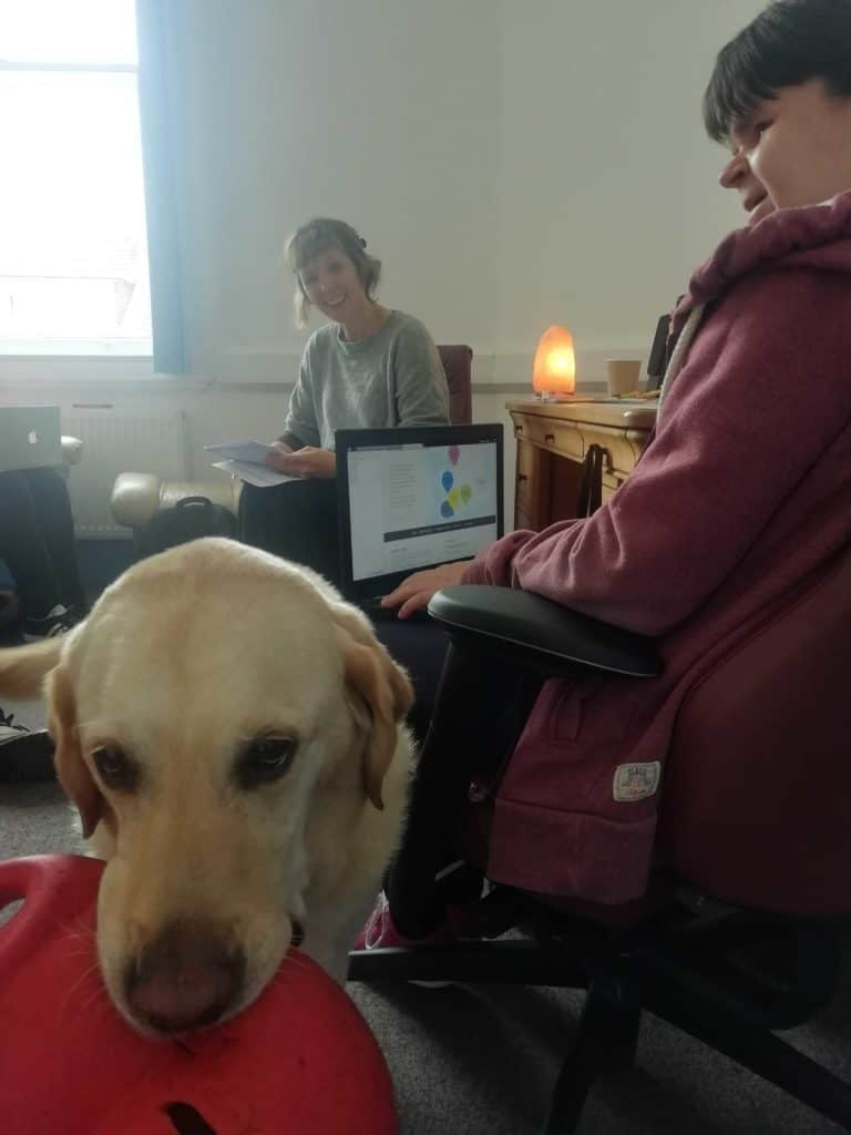A woman and her personal support dog test a website's accessibility